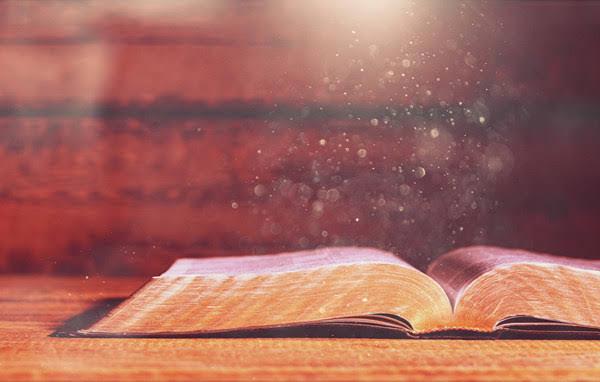 이사야 46장 동방의 독수리는 안상홍님을 가리키는 예언이다.